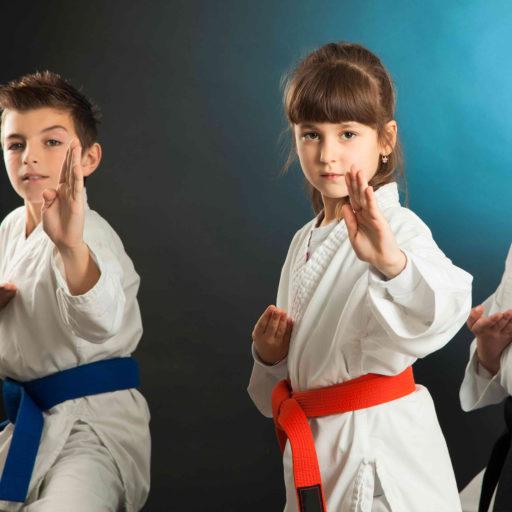 IMC Prospect Kids Karate Intermediate